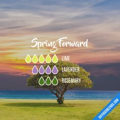 Spring Forward - Essential Oil Diffuser Blend