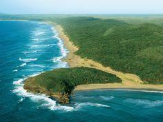 Rocktail Beach Camp turtles return - News and Blog - Ashworth Africa