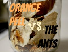 Wow! Get rid of ants naturally with dried orange peel.