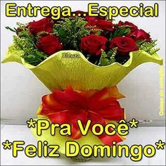 Portuguese Quotes, Christmas Wreaths, Grades, Google, Good Morning Wishes, Happy Sunday Images, Powerful Quotes, Happy Week, Flower Photos