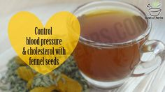 How to control blood pressure and cholesterol with fennel seeds - DIY – Bowl of Herbs