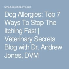Dog Allergies: Top 7 Ways To Stop The Itching Fast | Veterinary Secrets Blog with Dr. Andrew Jones, DVM Itchy Dog Remedies, Itching Remedies, Dog Skin Allergies, Dog Health Care, Cat Health, Dog Food Online, Medication For Dogs, Cheap Dog Food, Dog Itching