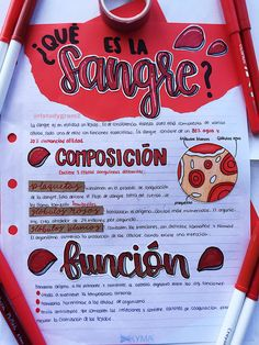 #Studygram #motivation #study #blood #studying #apuntesbonitos Bullet Journal Notes, Bullet Journal School, Bullet Journal Ideas Pages, Medicine Notes, Medicine Student, Cute Notes, Pretty Notes, Class Notes, School Notes