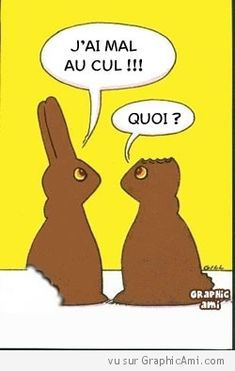 Cest pas gagné pour que ces deux lapins arrivent à se comprendre ! Joyeuse Pâques !