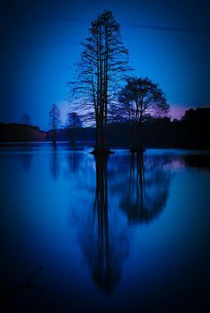 In the evening blue soooo beautiful