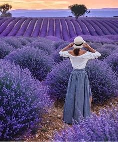 Beautiful fields of lavender 💜 Purple Love, All Things Purple, Purple Rain, Shades Of Purple, Beautiful Landscapes, Beautiful Gardens, Beautiful Images, Beautiful Flowers, Lavender Blue