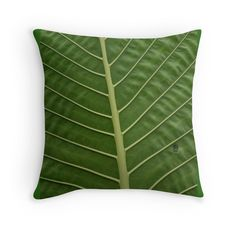 Vibrant Tropical Rainforest Taro Leaf Veins Green Leaves Photographic Print Garden Texture Pattern Throw Pillow Cushion. Printed from an original photograph by Jo Rymell.