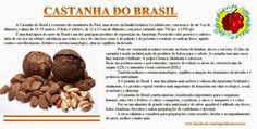 Cozinha Simples da Deia: Castanha do Brasil - Conheça seus benefícios