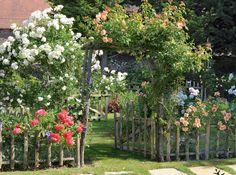 Comment créer une belle clôture et un portique fleuris pour une entrée accueillante ? Cette proposition d'aménagement, moins lourde qu'une haie traditionnelle...