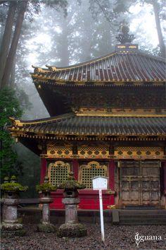 Mystic World  Nikko #tochigi #japan