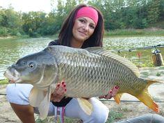 Csajok halak ponty-21 Women Fishing, Carp Fishing, River, Recipes, Recipies, Ripped Recipes, Rivers, Cooking Recipes