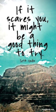 It it scares you it might be a good thing to try. Seth Godin