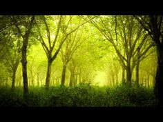 Sibelius - The Wood-Nymph, Ballade, Op 15 - Vänskä - YouTube