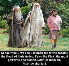 funny lotr - he should get a costume and do a spoof xP