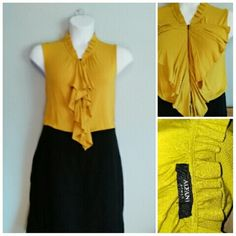 Armani Blouse Fierce and feminine Armani Blouse. Gold color zip front ruffles. Soft and luxe feeling. Sleeveless. Looks great alone or with suits. Armani Tops Blouses