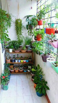 Terrace Decor, Small Balcony Decor, Small Balcony Garden, Balcony Plants, Small Backyard Gardens, Indoor Plants, Porches, Apartment Balcony Decorating, Apartment Balconies