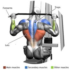 LATS -  WIDE GRIP PULLDOWN BEHIND THE NECK