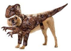 T Rex dog costume~ hilarious!