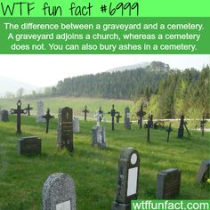 Difference between graveyard and cemetery - WTF fun facts #AmazingFacts