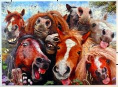 "Ravensburger ""Selfies"" by artist Howard Robinson. 1,000 pieces. I love this one so much--I have the color print that was included with the puzzle pinned up by my computer!"