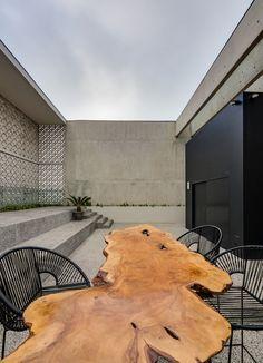 Gallery of Morphology Building / Talia Valdez + Nómena Arquitectos - 15
