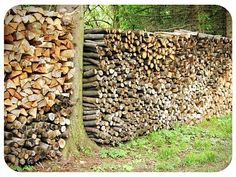Find joy in the small simple things...like a neatly stacked woodpile !