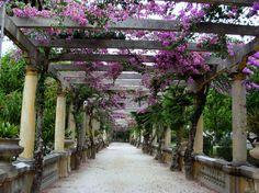 Parque Infante D.Pedro - Aveiro, Portugal