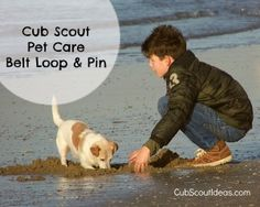 Resources to help your #CubScout earn his Pet Care Belt Loop & Pin.