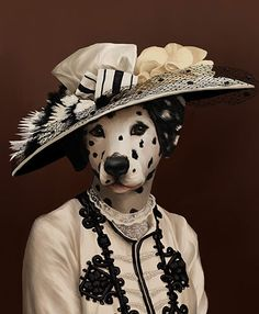 Downton: Cora, the countess of Grantham, as a dalmation