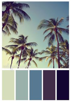 California love Colour Pallette, Color Palate, Colour Schemes, Color Combos, California Palm Trees, California Colors, Color Me Beautiful, Beach Color, World Of Color