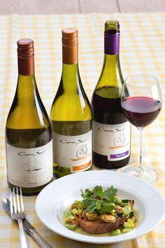 Cono Sur summer wines with our seasonal recipe http://recipes.conosurseasons.com/recipes