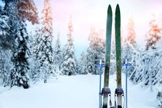 5 Cross-Country Ski Tips for Beginners jumping country skiing resorts Colorado ski Ice climbing Vermont Ski Resorts, Colorado Resorts, Best Ski Resorts, Skiing Memes, Skiing Quotes, Ski Tips For Beginners, Photo Ski, Colorado Winter, Skiing Colorado