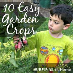 10 Easy Garden Crops