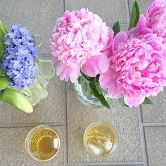 Spring Massey cocktails: rye, elderflower syrup, seltzer, lime. YUM. Best Whiskey Cocktails, Spring Cocktails, Cocktail Names, Bourbon Recipes, Ginger Syrup, Elderflower, Rye, Macaroons, Cheers