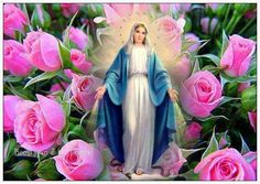 Share Our Lady with the World and bring great graces to all. O Mary, conceived without sin, pray for us who have recourse to you Blessed Mother Mary, Blessed Virgin Mary, Queen Mother, Rosary Catholic, Catholic Art, Stairs To Heaven, I Love You God, Mama Mary, Queen Of Heaven