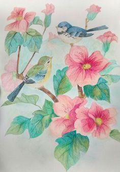 Little birds drawing
