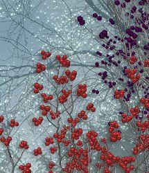 RDNA Winter Foliage - Berry Trees 1