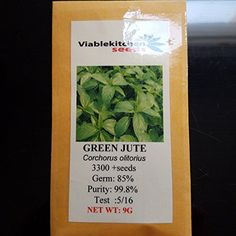 Vegetable Green Jute Seedssaluyot Molokhia Egyptian Spinach Seeds Rau Day Seeds 33009g By Kitchenseeds US seller >>> Read more by visiting the link on the image.