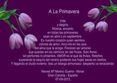 Meu blog - Encontro de Poetas e Amigos