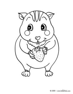 baby hamster colouring pages coloring pinterest baby hamster