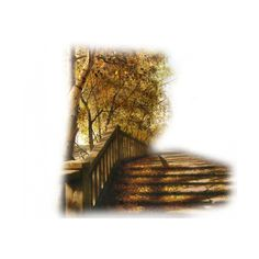 tubes escaliers ❤ liked on Polyvore featuring backgrounds, stairs, tubes, autumn, art and fillers