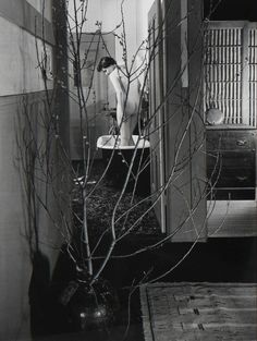 Find the latest shows, biography, and artworks for sale by Imogen Cunningham. One of the first professional female photographers in America, Imogen Cunningha… White Photography, Fine Art Photography, Street Photography, Imogen Cunningham, Alfred Stieglitz, Model Face, Female Photographers, Double Exposure, Artsy