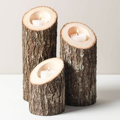 3-Pc. Tree Bark Tealight Holders - Dot & Bo