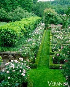 Gardening | Projects to Try | Pinterest | Gardens, Landscaping and on magnolia garden, english laurel garden, english rose garden, pink and white landscape garden, lilac garden, hydrangea garden, iris garden, english garden landscape design ideas, english heather garden, carnations garden, camellia garden, flower border around vegetable garden, english lavender garden, english ivy garden, gardenia garden,