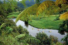 Babinda Creek, Queensland