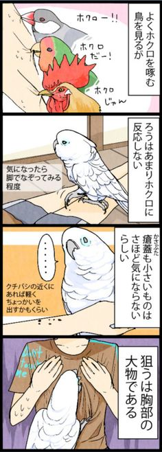 漫画「いたずらオウムの生活雑記」 (391) あまりホクロには反応しない | ライフスタイル | マイナビニュース