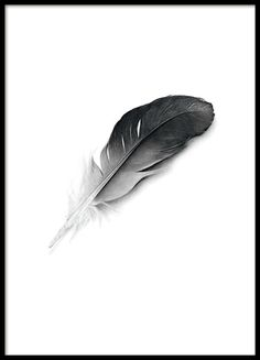 Poster with a black and white feather. A beautiful art poster that looks great in a Scandinavian home. This is one of our most popular posters and we definitely understand why. www.desenio.com
