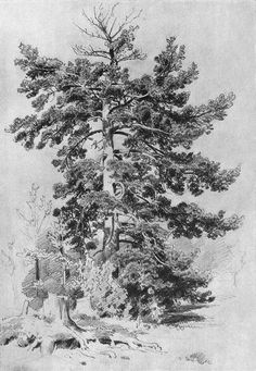 ART & ARTISTS: Ivan Shishkin - part 5