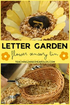 This alphabet flower sensory bin is a fun, hands-on way to build toddler and preschool literacy skills! #sensory #sensorybin #alphabet #literacy #abc #flowers #preschool #toddlers #AGE2 #AGE3 #teaching2and3yearolds Preschool Literacy, Literacy Skills, Toddler Preschool, Sensory Bins, Sensory Activities, Sensory Play, Time Planner, Writing Area, Alphabet Soup