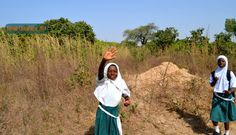 Gambia kids - It's travel O'Clock